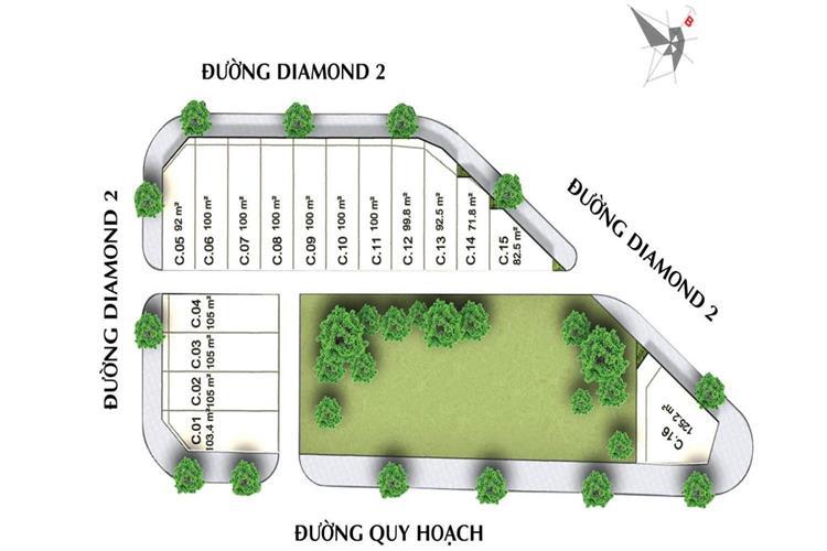 Mặt bằng dự án Diamond Central Biên Hòa